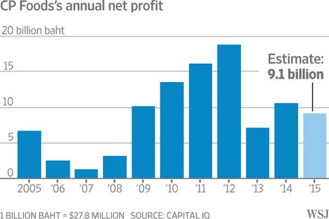 Empire of Thailand's Richest Man Faces Pressure   Business   Scoop.it