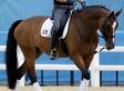 Le candidat à la Maison Blanche, Mitt Romney, représenté au dressage des JO - Huffingtonpost.com | JO 2012 - Equitation | Scoop.it