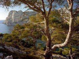 Des paysages uniques - Parc National des Calanques – Marseille | Participez au Defi Photos Parc national des Calanques | Scoop.it