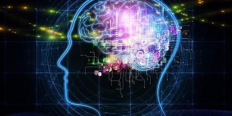 Comment le cerveau fait-il pour nous permettre d'apprendre? - Sydologie - toute l'innovation pédagogique !   Apprendre l'anglais   Scoop.it