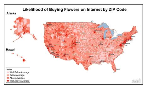 Who buys all the flowers and jewelry on Valentine's Day? | Geography Education | Scoop.it