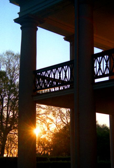 Sunrise at Oak Alley | Oak Alley Plantation: Things to see! | Scoop.it