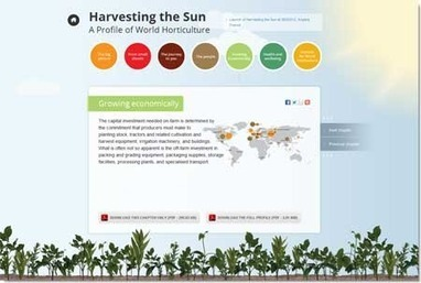 http://www.ishs.org/news » Harvesting the Sun – A Profile of World Horticulture | Vertical Farm - Food Factory | Scoop.it