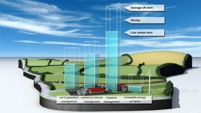 Carbon Visuals: Illustrating low carbon farming | Carbon Farming | Scoop.it