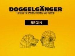 Insolite. Un logiciel pour trouver le chien qui vous ressemble ! | CaniCatNews-actualité | Scoop.it