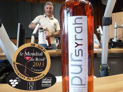 Médaille d'OR pour le rosé Pur Syrah du Domaine de Montels ! | oenotentic | Scoop.it