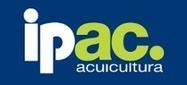 Sagarpa promueve un proyecto de acuaponía para impulsar la acuicultura a pequeña escala - Última hora - Ipac. Revista de acuicultura | Cultivos Hidropónicos | Scoop.it