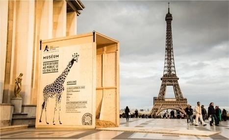 Le Zoo de Paris investit la capitale | Revue de presse du Web | Scoop.it
