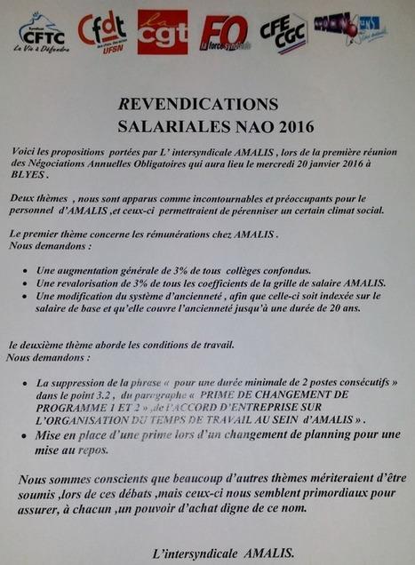 AMALIS début de la Négociation Annuelle Obligatoire | | Salariés précaires de l'industrie nucléaire | Scoop.it