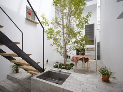 Outside In House: Lively Courtyard Brings Nature Indoors | Rendons visibles l'architecture et les architectes | Scoop.it