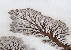 infinity-imagined: Geological Branching Fractals | Butterflies in my head | Scoop.it