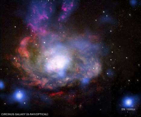 Citizen science in Australia: Discovering Supernovae | Science ouverte - Open science | Scoop.it