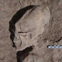 Esqueletos de Crânio alongado são encontrados no México.   Science, Technology and Society   Scoop.it
