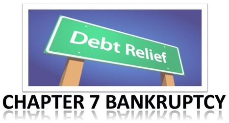 Bankruptcy Course And More: Chapter 7 Bankruptcy: Your Passport to Relief in Times of Financial Needs | Finance and Business | Scoop.it