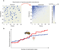 Emergence of structural and dynamical properties of ecological mutualistic networks | Social Foraging | Scoop.it
