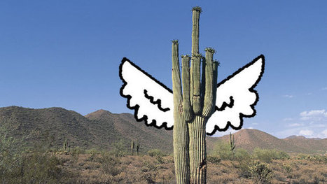 Why Is Angel Investing Hot in Tucson? - Businessweek | infographics | Scoop.it