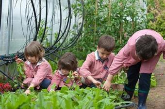 Orto a scuola per imparare a mangiar bene - Adnkronos/IGN | Coltivare l'orto | Scoop.it