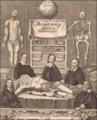 Anatomy Corner | Elearning Vet | Scoop.it