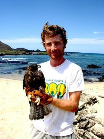 Galápagos hawks hand down lice like family heirlooms | Science Codex | CALS in the News | Scoop.it