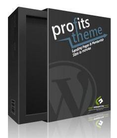 Profits Theme Review - Bonus - Discount   IM Product Review - Special Offer - Giveaway   Scoop.it