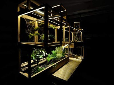 Building a City for Plants, Inspired by NYC | Vertical Farm - Food Factory | Scoop.it