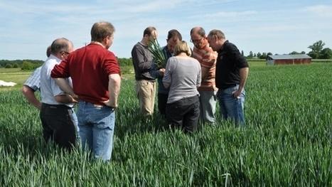 Innov'Action 2014 - De nombreuses fermes ouvrent leurs portes dans 12 régions   Agriculture en Gironde   Scoop.it
