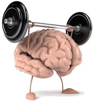 Training Our Brain To Keep It Essential | Entrepreneurship | Scoop.it