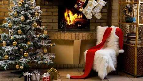 Živý alebo umelý? Pomôžeme vám s výberom vianočného stromčeka! | domov.kormidlo.sk | Scoop.it