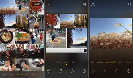 Alive Is A Neat Little App To View, Edit And Share Your Live Photos | Tools You Can Use | Scoop.it