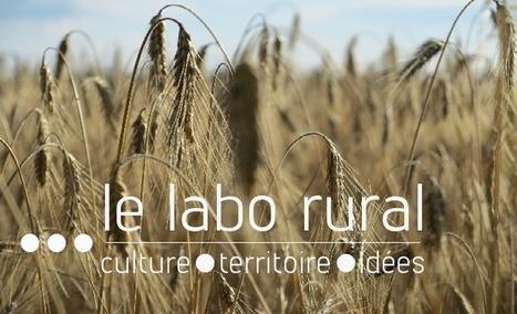 Le labo rural | L'art contemporain exposé en milieu rural | Scoop.it