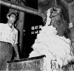 History of asbestos in McLean County - nwitimes.com | Asbestos | Scoop.it