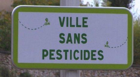 Les villes de France en chemin vers le zéro phyto   Home   Scoop.it