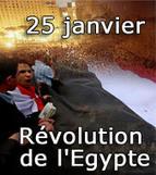 El Haddad :La présidence réitère son engagement à protéger le droit des Egyptiens à la liberté d'expression | Égypt-actus | Scoop.it