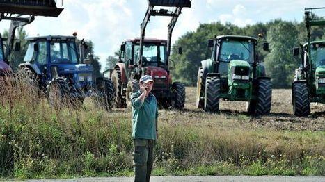Crise agricole: un an après, les éleveurs vont-ils mieux ? du 02 août 2016 - France Inter   Actualités Générales en Agriculture   Scoop.it