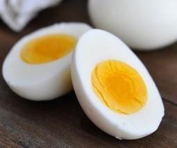 Yumurta Nasıl Saklanır? Tarifi | corbatariflerikitabi | Scoop.it