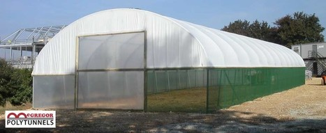 Revolutionary Design In Commercial Polytunnels | Polytunnel | Scoop.it