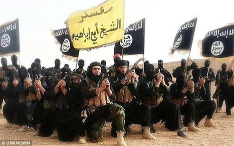ISIS execute 25 people by lowering them into NITRIC ACID | The Pulp Ark Gazette | Scoop.it