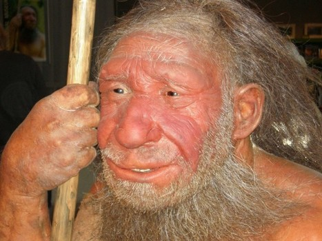Were social networks humanity's edge over Neandertals?   Science Facts   Scoop.it
