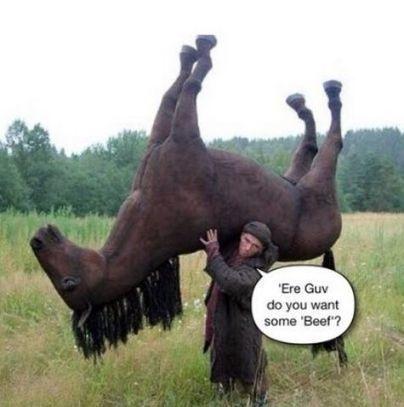 L'affaire des lasagnes au cheval détournée sur Twitter | 694028 | Scoop.it