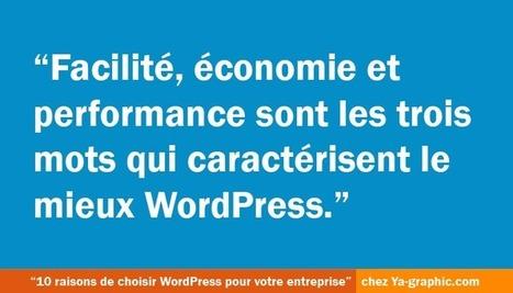 10 bonnes raisons de choisir WordPress pour votre entreprise | Entrepreneurs du Web | Scoop.it