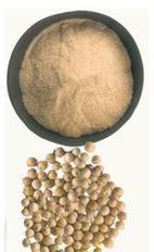Pimienta blanca - Propiedades de la pimienta blanca | PIMIENTA (Piper nigrum) | Scoop.it