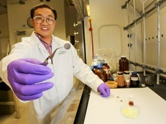 All-solid lithium-sulfur battery stores four times as much energy as lithium-ion | Five Regions of the Future | Scoop.it
