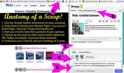 Digital Curation & Sweet Scoopage | The Daring Librarian | Scoop.it on the Web | Scoop.it