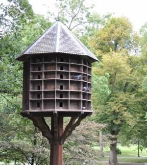 Pigeonnier contraceptif expérimental àBordeaux | Bordeaux : tourisme et art de vivre | Scoop.it