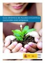 Guía permanentemente actualizada de #Ayudas e incentivos para empresas por CCAA | Emplé@te 2.0 | Scoop.it