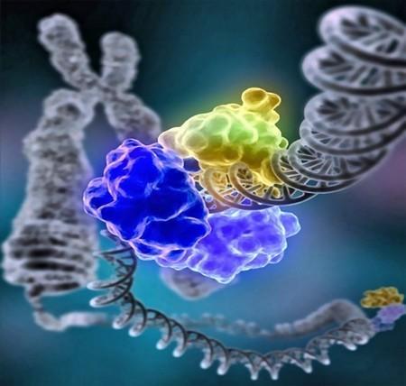 Berkeley develops quick blood test to ID people exposed to ionizing radiation | Longevity science | Scoop.it