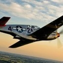 The Tuskegee Airmen: 5 Fascinating Facts | Tuskegee Airmen | Scoop.it