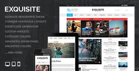 Exquisite - Ultimate Newspaper Theme - WordpressThemeDB | WordpressThemeDatabase | Scoop.it