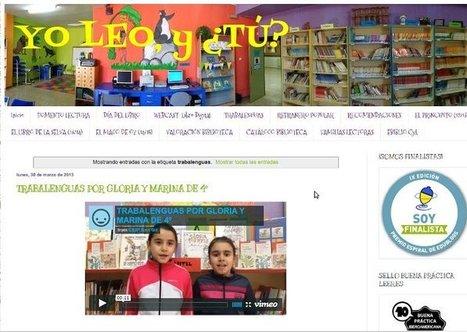Calidad en los blogs de las bibliotecas escolares: indicadores y ejemplos | Recull diari | Scoop.it