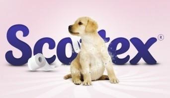 Buoni sconto Carta Igienica Scottex | Coupon e buoni sconto per la spesa alimentare | Scoop.it